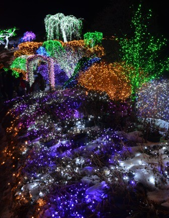 Morning Calm Arboretum Hometown Garden beautiful lights