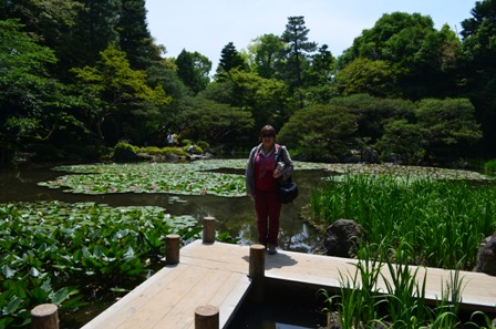 me at Shinen Gardens waterlily pond