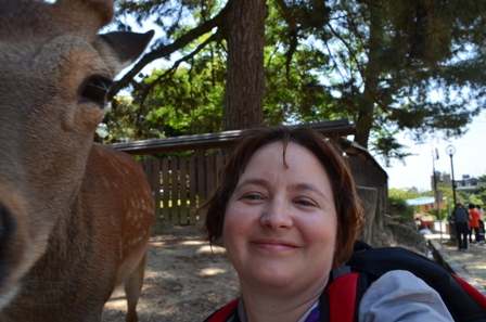 me selfie with deer, Nara Park