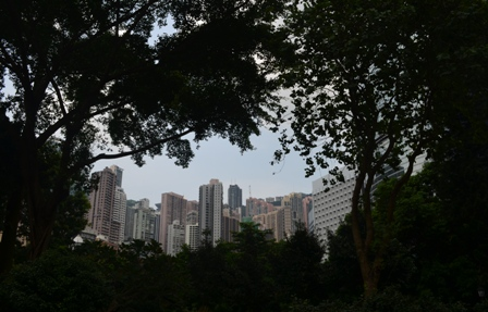 Hong Kong park architecture tree frame