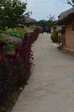 Andong Hahoe Maeul flower lined street