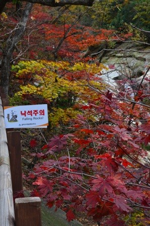 Sibiseonnyetang falling rocks colorful trees