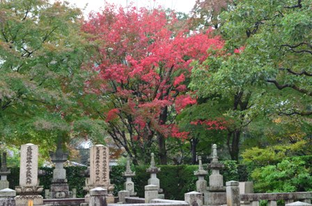 Kyoto Arashiyama Arashion Temple gravestone and a red tree