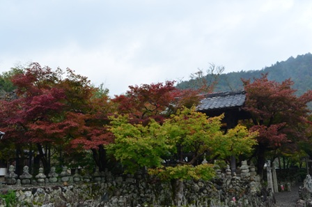 Kyoto Arashiyama Arashion Temple gravestones and colorful trees
