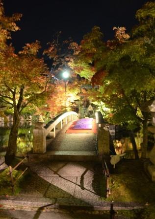 Kyoto Night Eikando Temple bridge