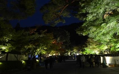 Kyoto Night Eikando temple entrance