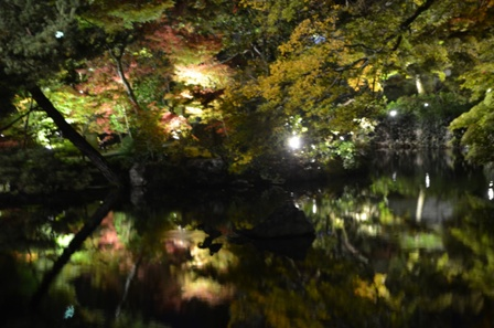 Kyoto Night Eikando Temple pool reflections
