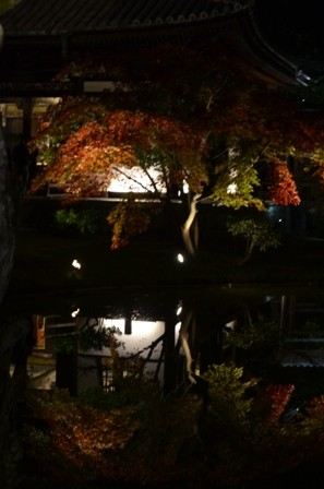 Kyoto Night Kodaiji Temple orange reflection pool