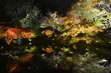 Kyoto Night Kodaiji Temple pool reflection