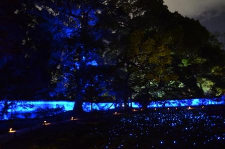 Kyoto Night Shorenin Temple lighted yard