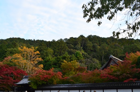 Kyoto Searching Nanzenji colorful autumn foliage