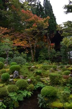 Kyoto Searching Sanzenji garden