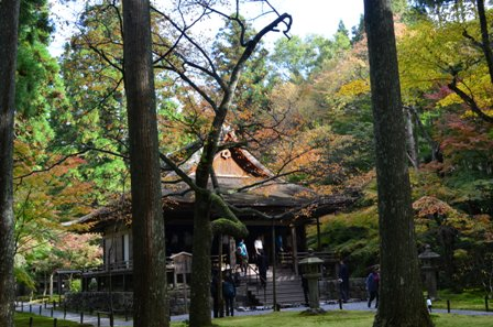 Kyoto Searching Sanzenji main temple