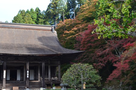 Kyoto Searching Sanzenji neighboring temple