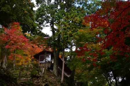 Kyoto Takao colorful building