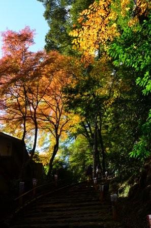 Kyoto Takao colorful path