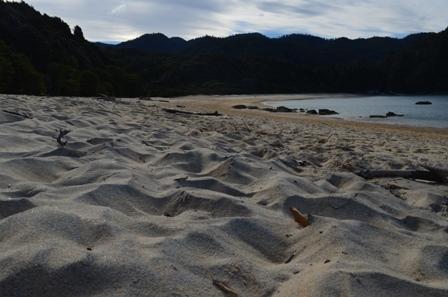 Abel Tasman Day One-12