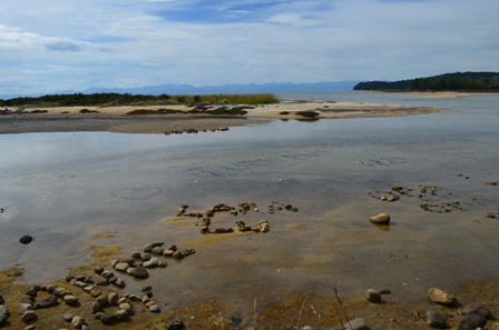 Abel Tasman Day One-2