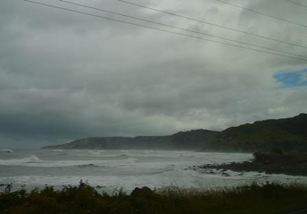 Coastal Pacific Train-12