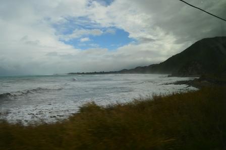 Coastal Pacific Train-8