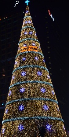 Holidays Seoul Christmas tree lights