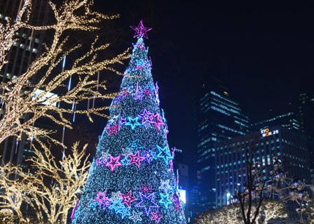 Holidays Seoul Christmas trees lighted