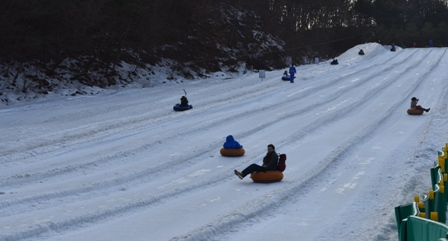 Everland Eiger sled run