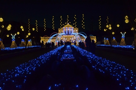 Everland Romantic Illumination castle fountain wide view