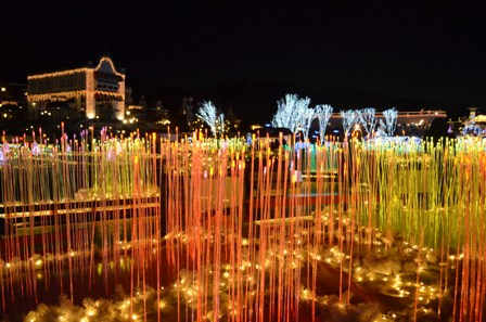 Everland Romantic Illumination colorful reed garden
