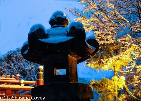 Toyko winter 2014-33