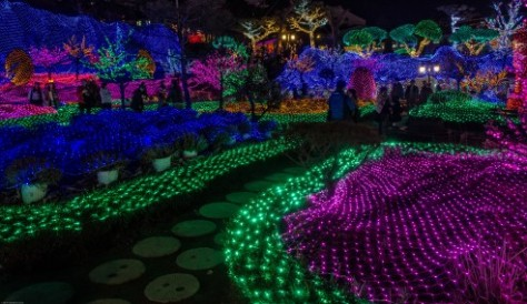 Herb Island Lighting Festival-11