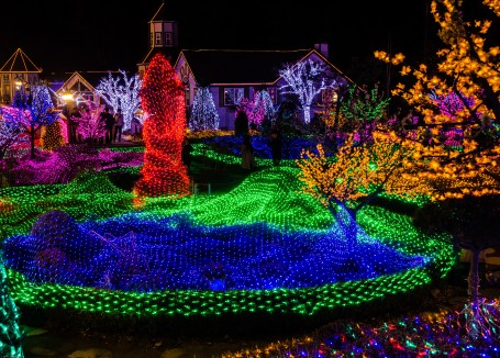 Herb Island Lighting Festival-16