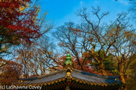 Changdeokgung Palace by day and night-17
