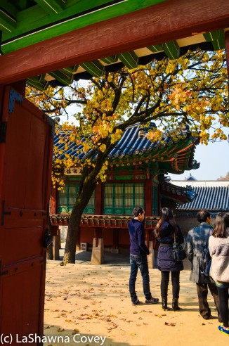 Changdeokgung Palace by day and night-3