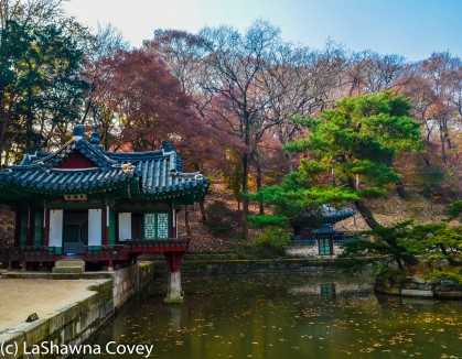 Changdeokgung Palace by day and night-6