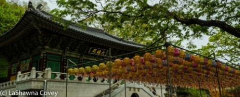 Goryosan Hike and Gangwha Market-9