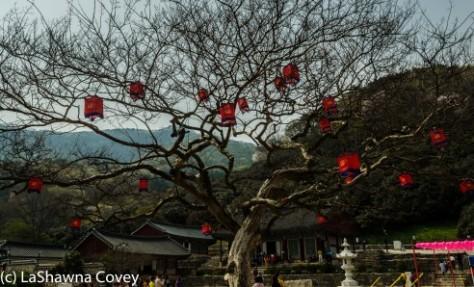 Seonunsa Temple-13
