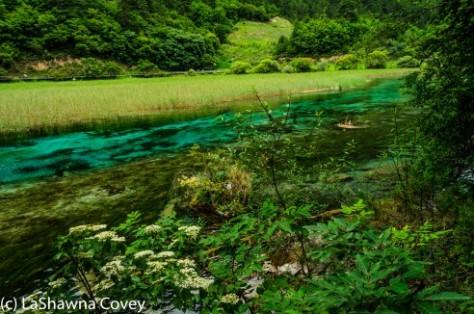 Jiuzhaigou Shu Zheng Valley-19