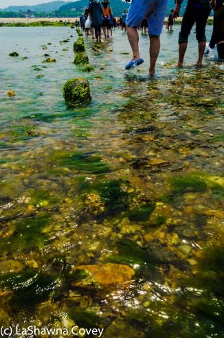 Muchangpo Sea Parting-15