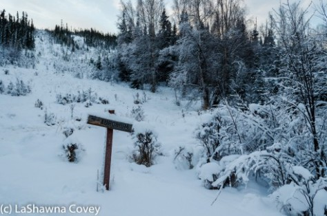 Fairbanks Chena Hot Spring 2015-26