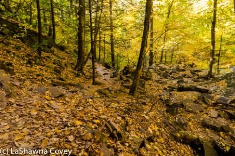 Hudson Valley hiking Kaaterskill Falls-7