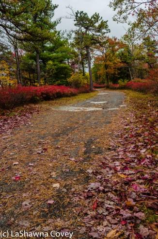 Hudson Valley hiking Old Minnewaska Trail-12