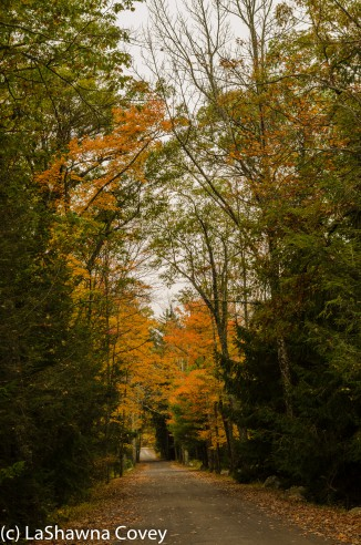 Hudson Valley leaf peeping-17