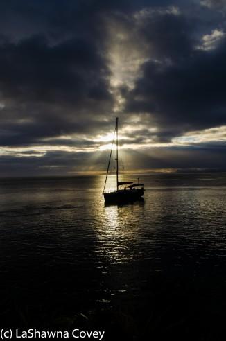 Tavenui Island-10
