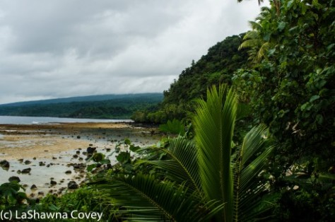 Tavenui Laverna Coastal Walk-3