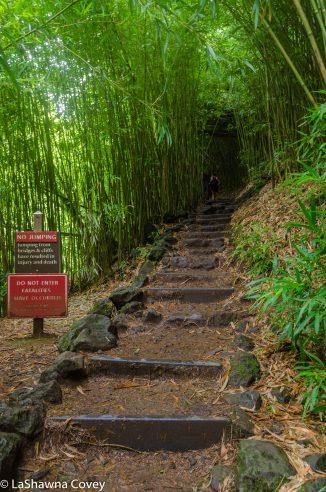 Haleakala National Park hiking-8