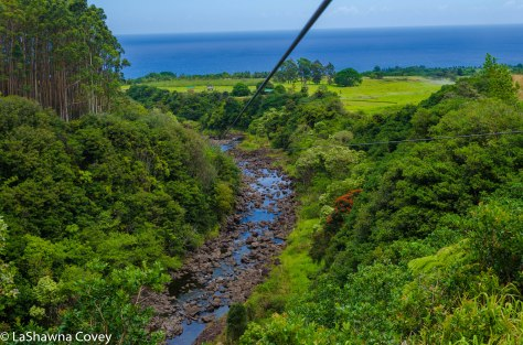 Hawaii zipline adventure-2