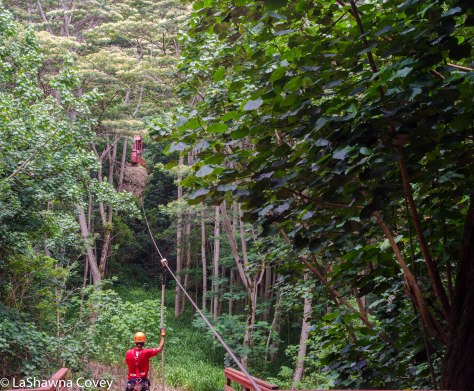 Hawaii zipline adventure-9