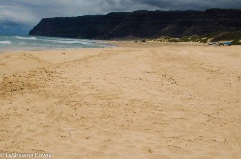 Kauai beaches- Polihale State Park-3