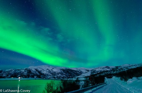 Northern Lights-16
